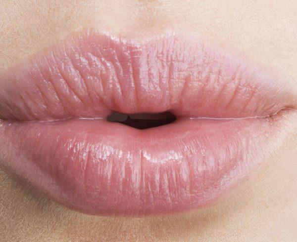 Nipple lips 1